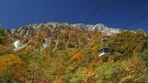 *周辺/紅葉の立山ロープウェイ。一面の絶景が広がります。
