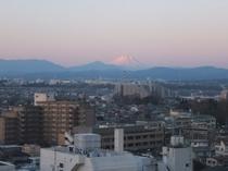 上層階南側の客室からの富士山