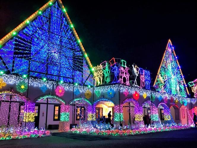 幻想的な光に包まれるドイツ村