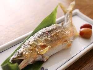 (4)宿六と料理長が釣ってくる、馬瀬川の地鮎がいただける夏季限定の逸品(一例)