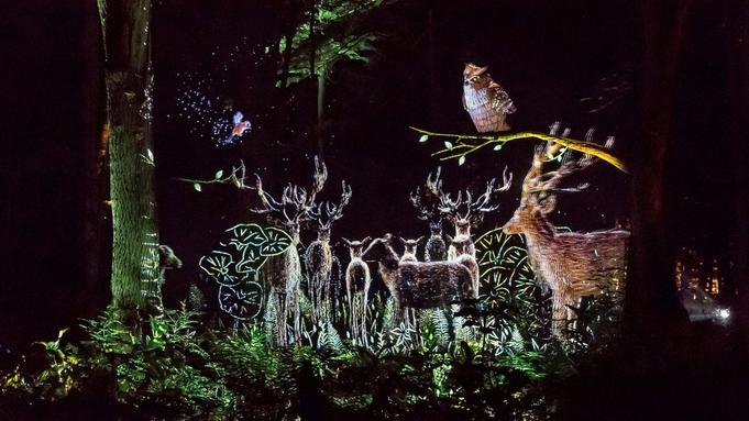 【阿寒の自然×デジタルアート】「カムイルミナ」チケット付/夕食バイキング・朝食バイキング