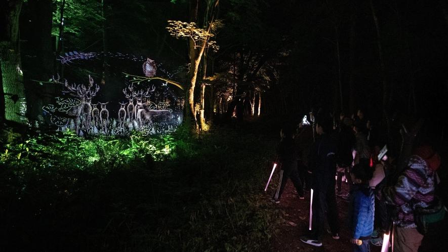 ■夜の森を歩いて愉しむナイトウォーク「カムイルミナ」/美しい映像と共に物語の一員に ※イメージ