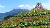 ■阿寒イオマプの庭/ドレスガーデンには色とりどりの花が咲き誇ります(イメージ)