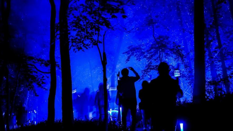 ■夜の森を歩いて愉しむナイトウォーク「カムイルミナ」/スティックを手にアイヌの物語の中へ ※イメージ