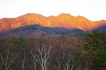 朝日の権現岳