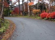 バーク西から正面の紅葉