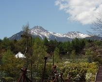 5月新緑と八残雪 清里の森から