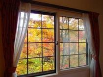 紅葉 客室からの眺め