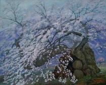 神代桜満開