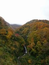 秋の不動滝