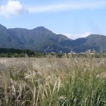 乙女峠と湿原①