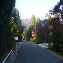 旅館前の道。金時山方面