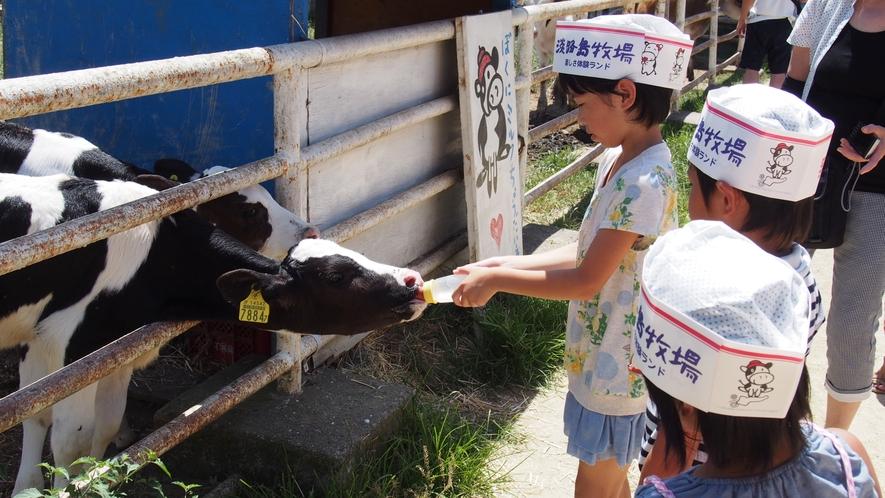 ★【淡路島牧場】乳しぼり体験やバター作り、ポニー乗馬等体験できます!(ホテルよりお車で約25分)