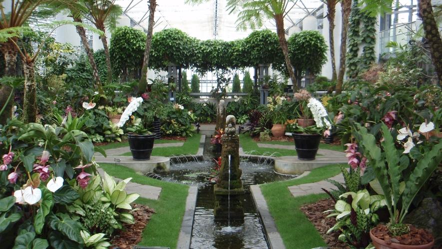 ★【奇跡の星の植物館】西日本最大級の温室植物館!シーズンによりテーマ演出が異なります。
