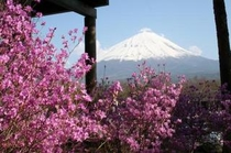 鳴沢村富士山