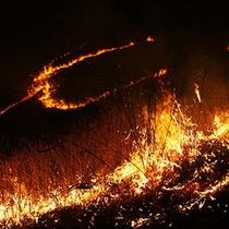 野火の祭典