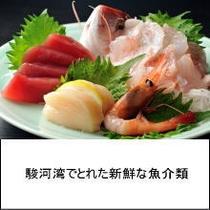 【プラン】刺身