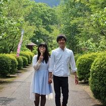 【城峯公園でお散歩】11月から12月にかけて冬桜が咲きます。夏場のお散歩にもおすすめ!