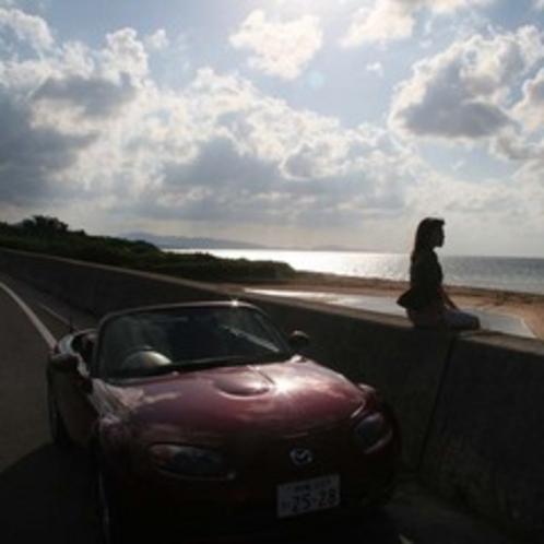レンタカーで石垣島観光 川平湾 平久保崎 米原ビーチ 玉取崎 見どころ満載