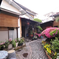 *玄関では季節の花が出迎えます。