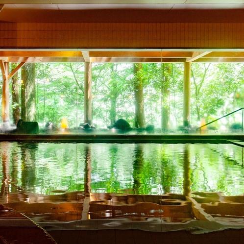 ~内湯の表面に新緑が映る朝~