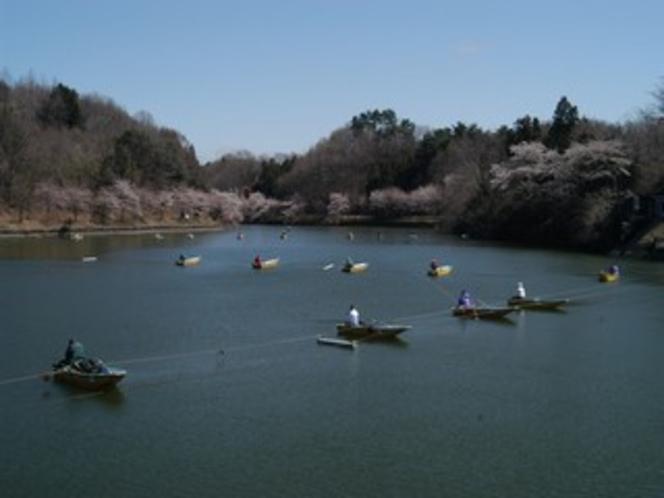 春の丹生湖