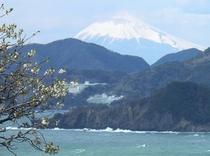 松崎の海kら見える富士