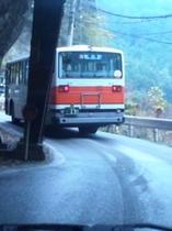 奈良交通路線バス