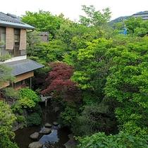 本館の庭園