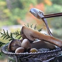 秋の味覚 松茸・椎茸・しめじ・栗・銀杏を炭火で。