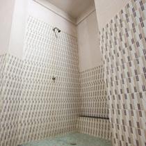 *【温泉大浴場・女湯】洗い場とシャワーがございます。