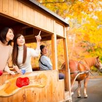 【公園めぐり馬車(秋)】