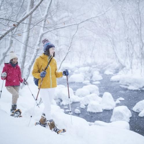 冬の奥入瀬渓流ガイドウォークツアー