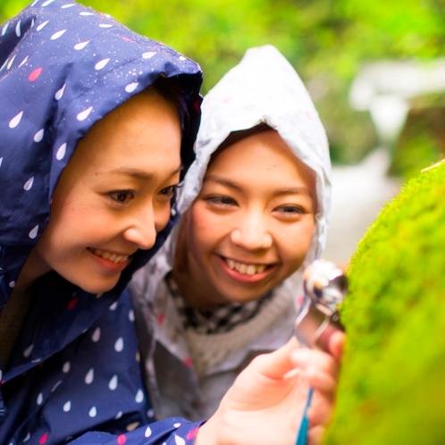 【雨の日限定プログラム】