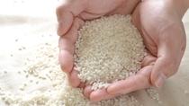*こだわりのお米/毎食、食卓に並ぶご飯は亭主自らが選ぶ地元の品質の良いお米ばかり。