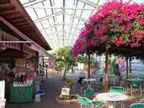 磯山観光いちご園の休憩所