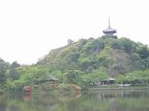 『三渓園』は代表的な日本庭園です。