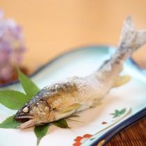 【ご夕食一例】名物の川魚の焼き物。朝採れの新鮮なものを使っているので、臭みがまったくありません