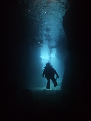 FUNダイビングin青の洞窟