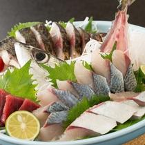 北浦のブランド魚【ひむか本さば】