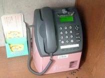 ロビー内の公衆電話はコイン式です