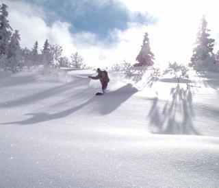 *八甲田スキー場/八甲田のパウダースノーが、あなたのお越しをお待ちしています☆