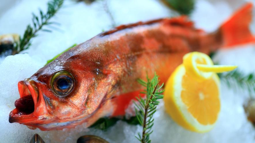 【旬の食材】漁獲量日本一!ウスメバル