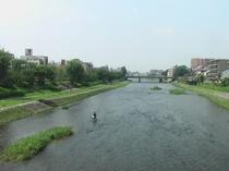 夏の鴨川と釣り人