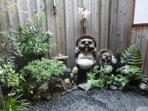町屋(清水)の坪庭のたぬきさん~