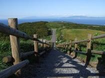 球島山 展望台から下を撮影