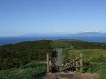 球島山から見える対岸