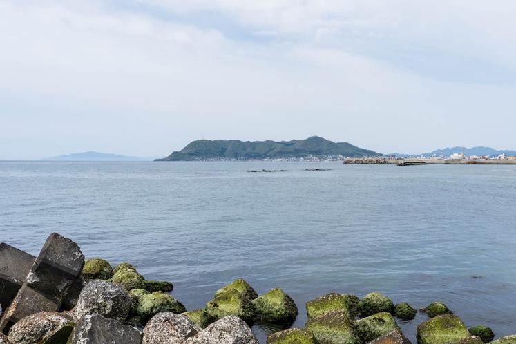 海岸堤防から望む函館山