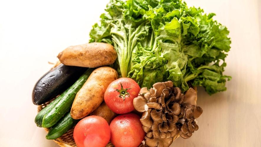 新鮮な地元野菜