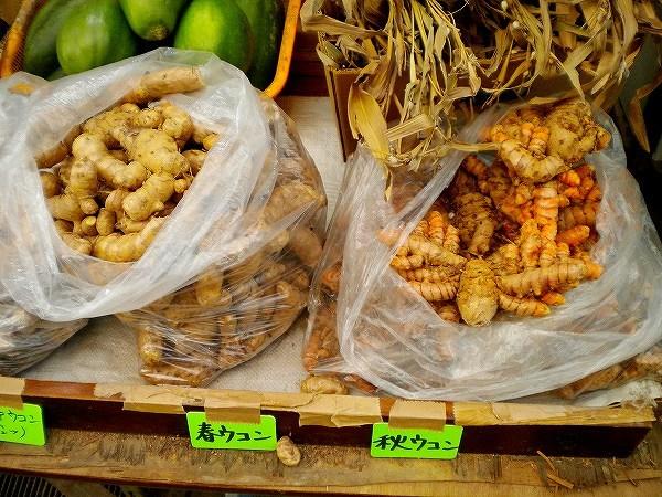 今流行りのウコンは沖縄原産が多いです